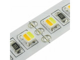 Двухцветная светодиодная лента (0)