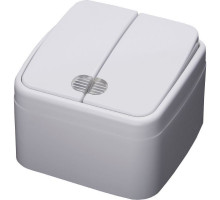 Выключатель 2-клавишный с индикатором STEKKER, PSW10-32-20, открытой установки, 250В, 10А, IP20, серия Basic, белый